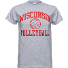 Cover Image for Game Master Wisconsin Volleyball