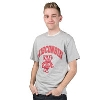 Image for Champion One Color Arch WI and Bucky T-Shirt (Gray)
