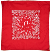 Cover Image for For Bare Feet Wisconsin Crew Socks (Red)