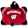 Cover Image for Fabrique Innovations, Inc. Bucky Badger Pillow Pet