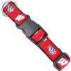 Cover Image for All Star Dogs Wisconsin Badgers Leash