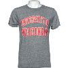 Image for League University of Wisconsin Tri-Blend T-Shirt (Gray)