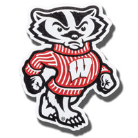 Cover Image For CDI Corp Medium Bucky Badger Magnet